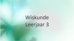 Leerjaar 3